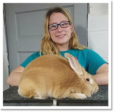 Palomino Rabbit Co-Breeders Assoc
